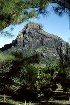 Montagne du lion