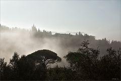 monte oliveto