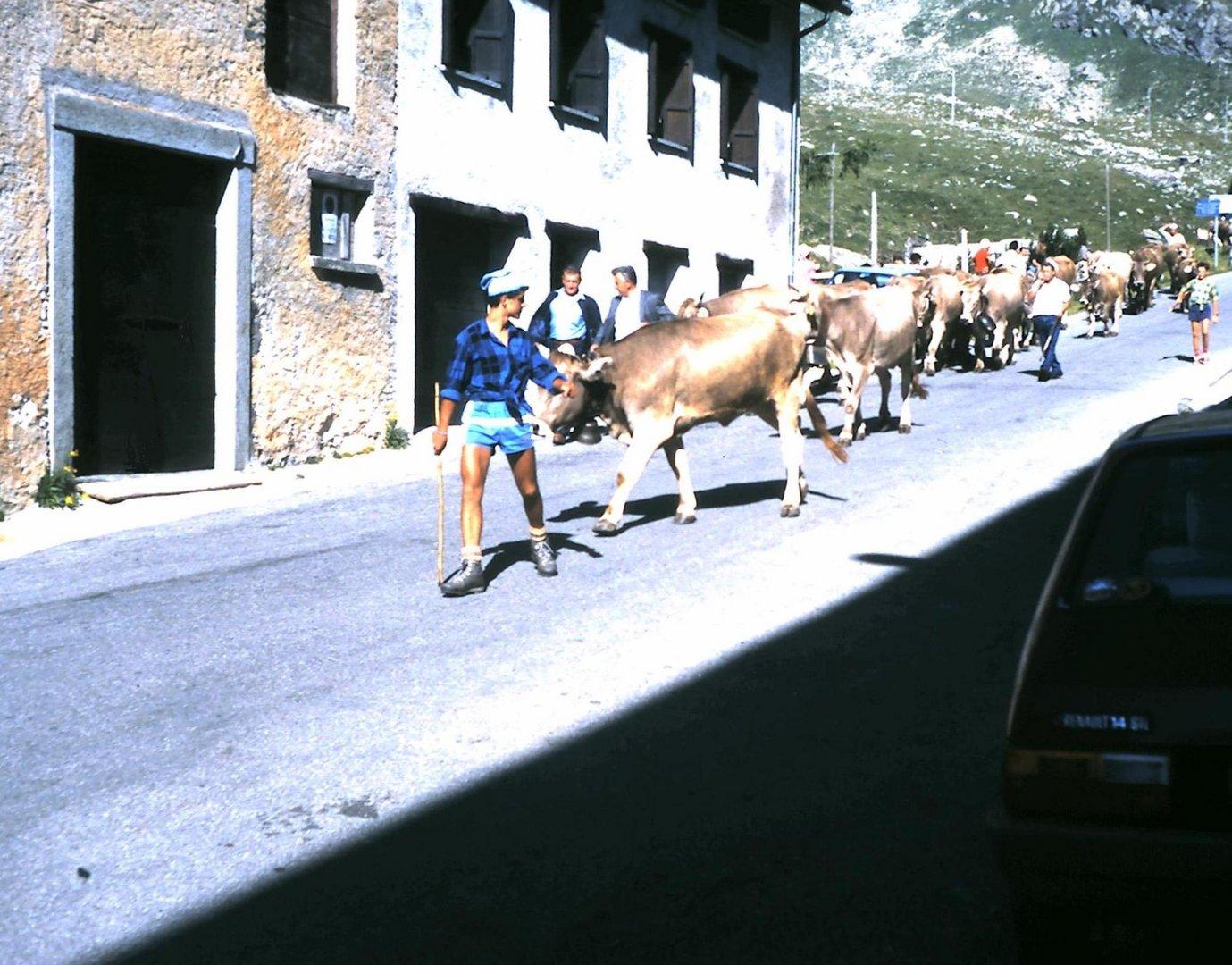 Montespluga - 1988 (3)