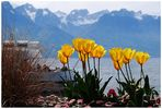 Montreux / Genfer See