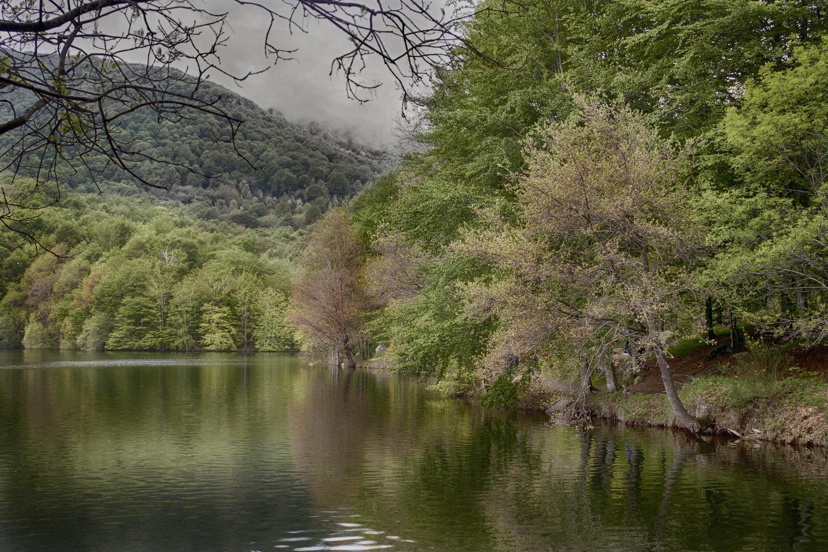 Montseny primavera 1