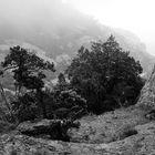 Montserrat, Spanien, 2014