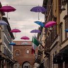 Monza sotto l'ombrello