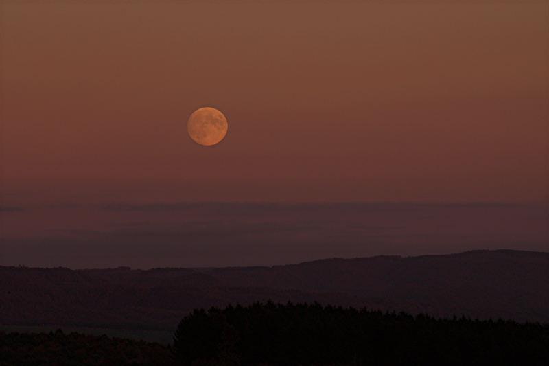 Moon...............