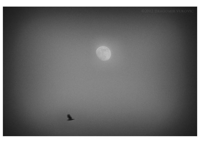 Moon And One