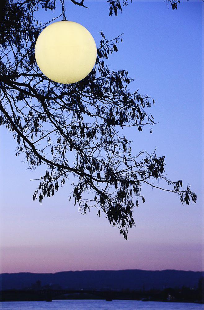 Moon   -  light