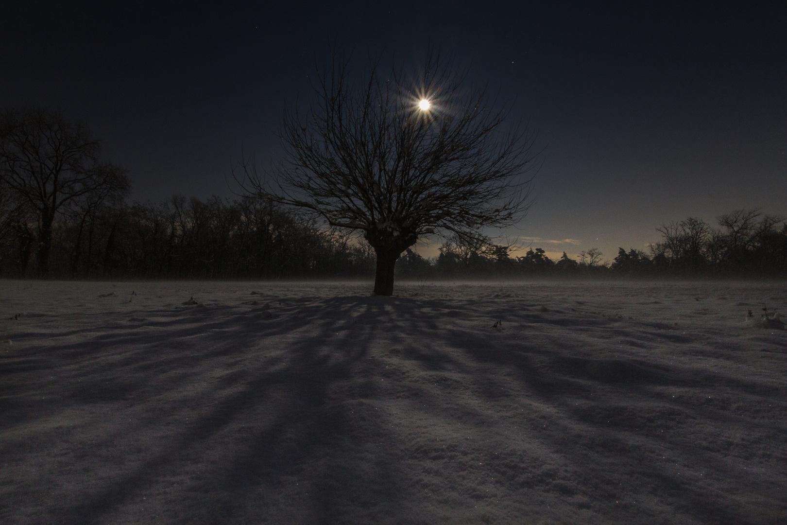 moon light shadows