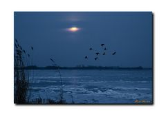 Moon over Lake Trebel
