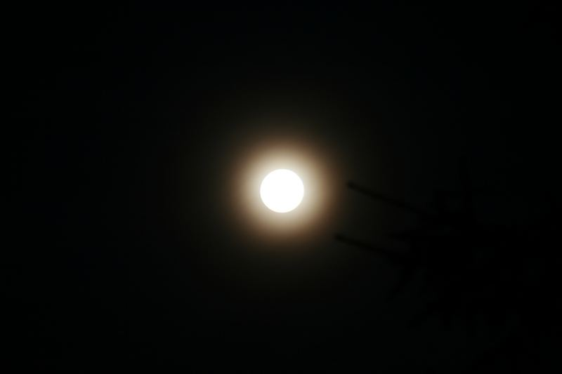 MoonCenter