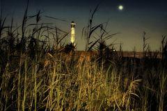 .....moonlight.....