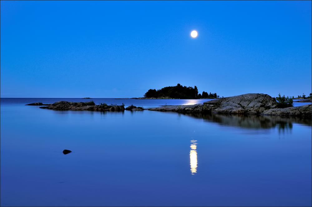 - Moonlight -