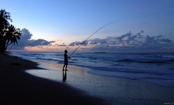 Moonlight Fishing