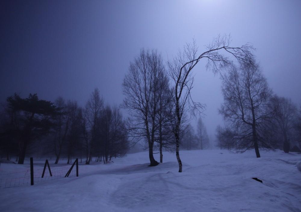 ~ Moonlight II ~