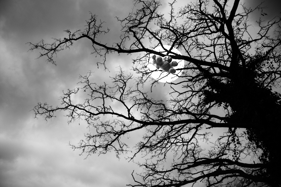 moonlight meets flying sheep pillow
