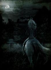 moonlight ride