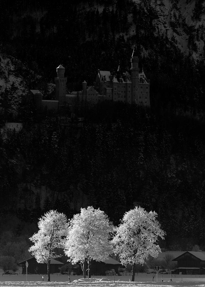 Moonshine over Neuschwanstein castle