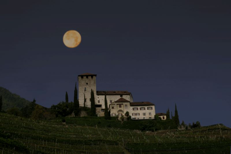 Moonshine over the castle