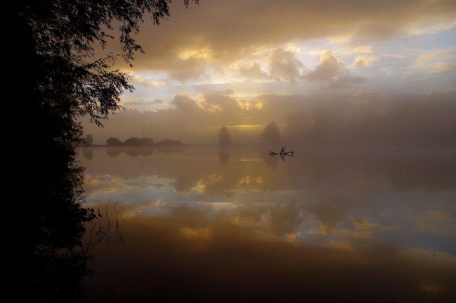 Moor im Nebel