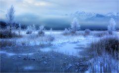 Moorlandschaft im Winter
