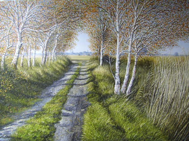 Moorlandsweg bei Jever (Friesland) von 2009