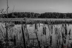 Moorsee SW