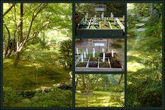Moosgarten des Ginkaku-ji