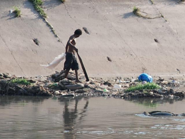 Morador do rio Tieté