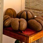 more cocos