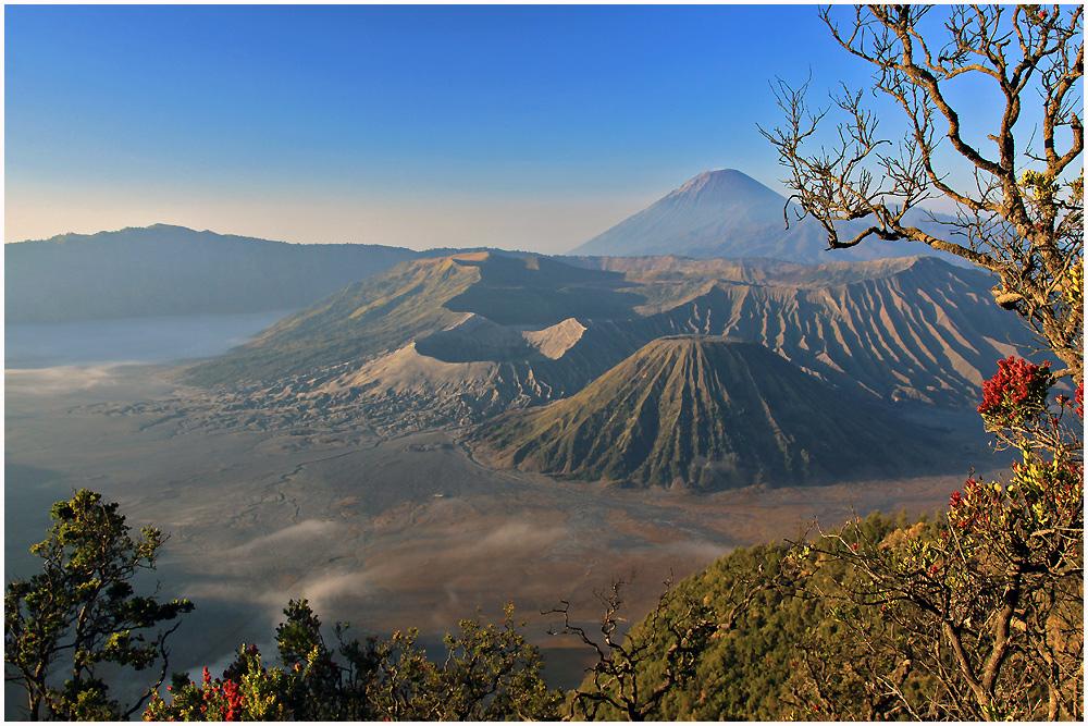 Morgen am Mt. Bromo