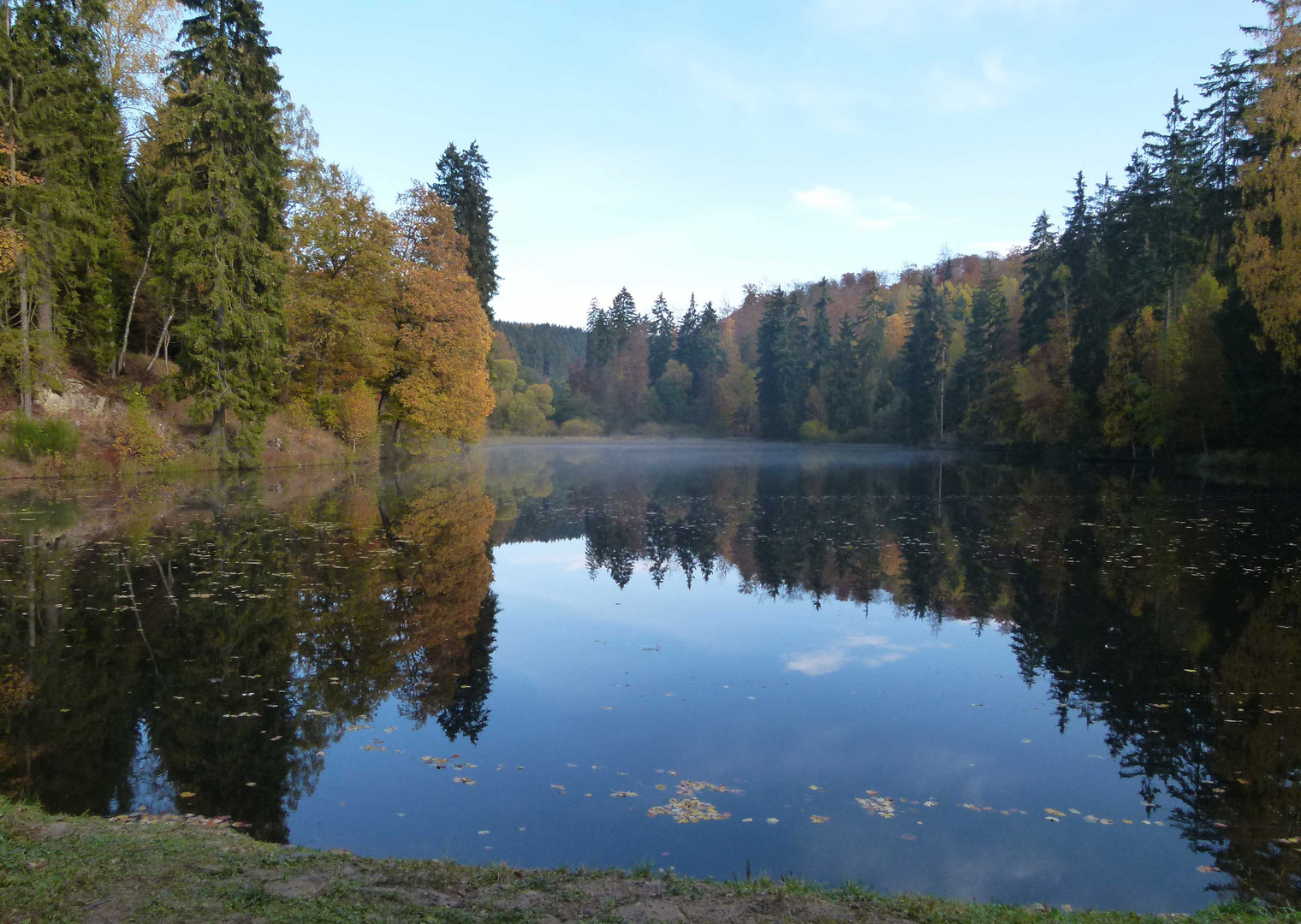 Morgen am See