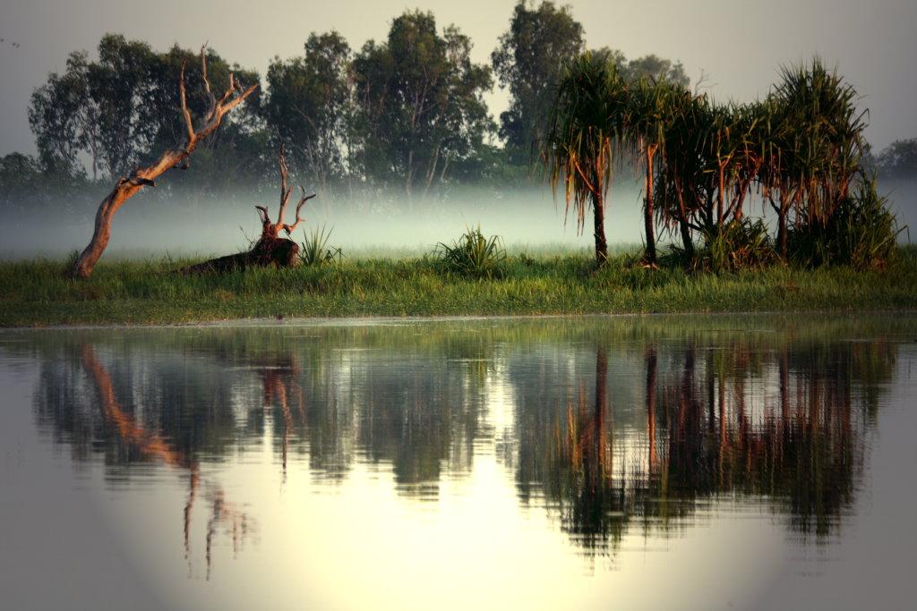 Morgen an der Yellow Water Lagoon