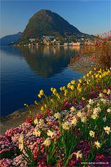 Morgen in Lugano