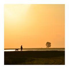 Morgen Spaziergang