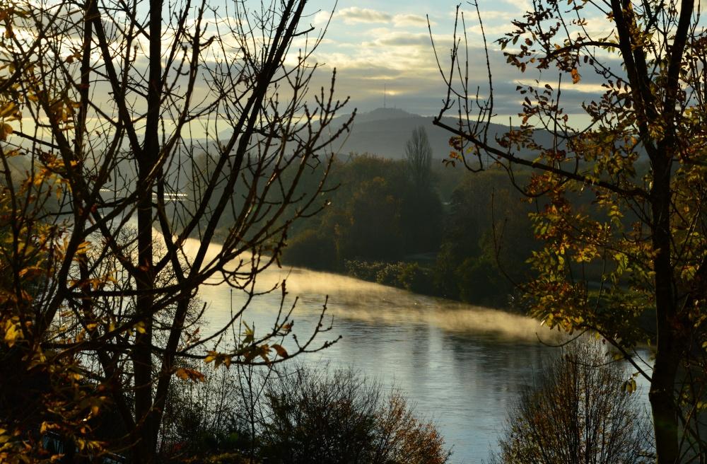 Morgenblick aus dem Fenster