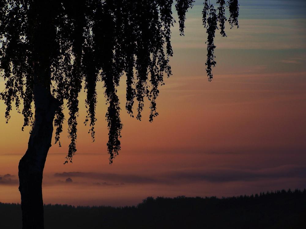 Morgendämmerung im Herbst