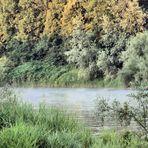 Morgendämmerung Neuenburg am Rhein, Steinenstadt, Oberrhein