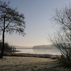 morgendliche Nebelstimmung am Möhnsee