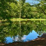 Morgendliche Ruhe und Stille am Teich im Eselsbachtal, er wird auch als Schwarzweiher bezeichnet.