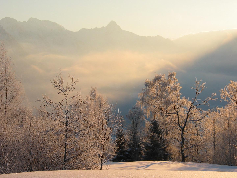 morgendliche Winterstimmung