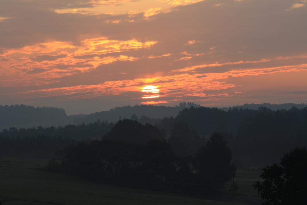 Morgendstimmung bei Eichelberg im Vorbayerischen Wald