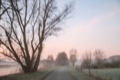Morgenduft