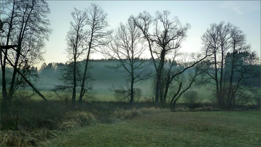 Morgendunst im Leintal