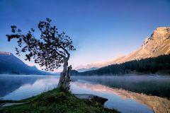 Morgenerwachen am Silsersee