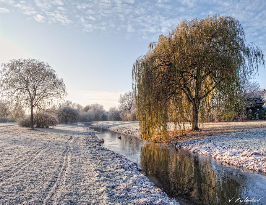 Morgenfrost in Arsten