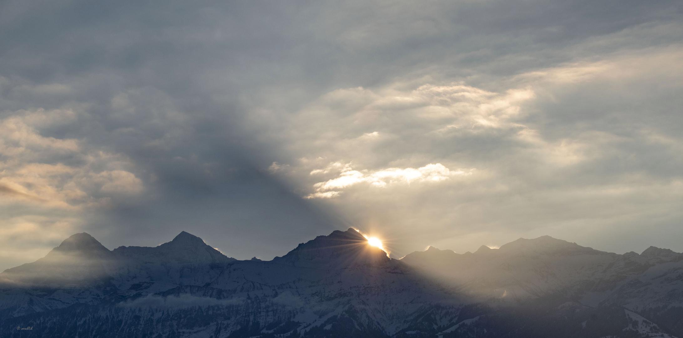 Morgengruß Bild