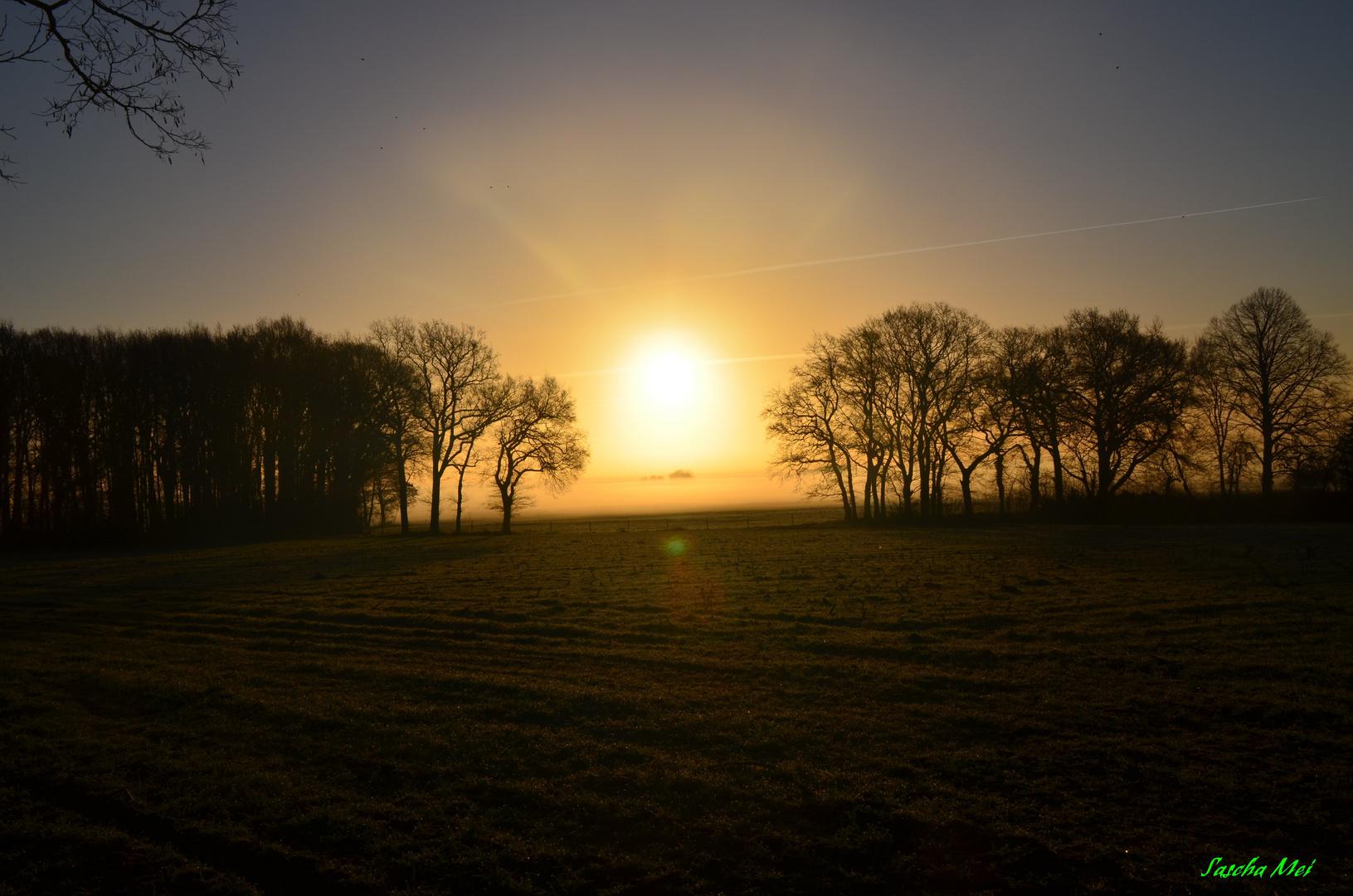 Morgengruss