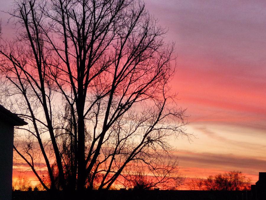 Morgenhimmel im Dezember
