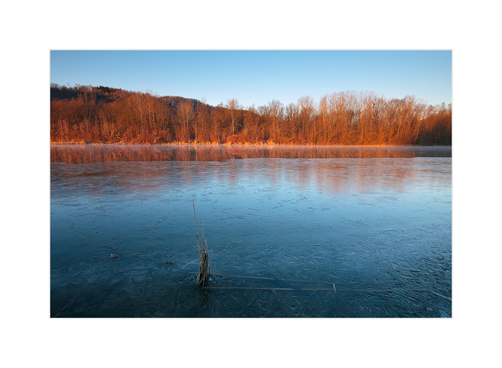 Morgenlicht am Fluss
