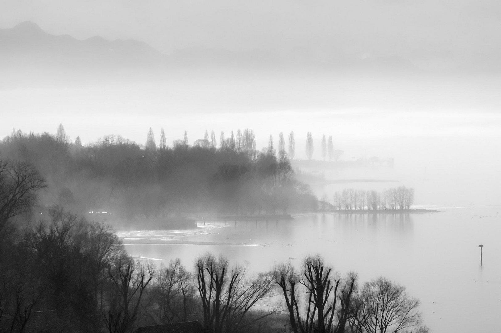 Morgennebel am Bodensee