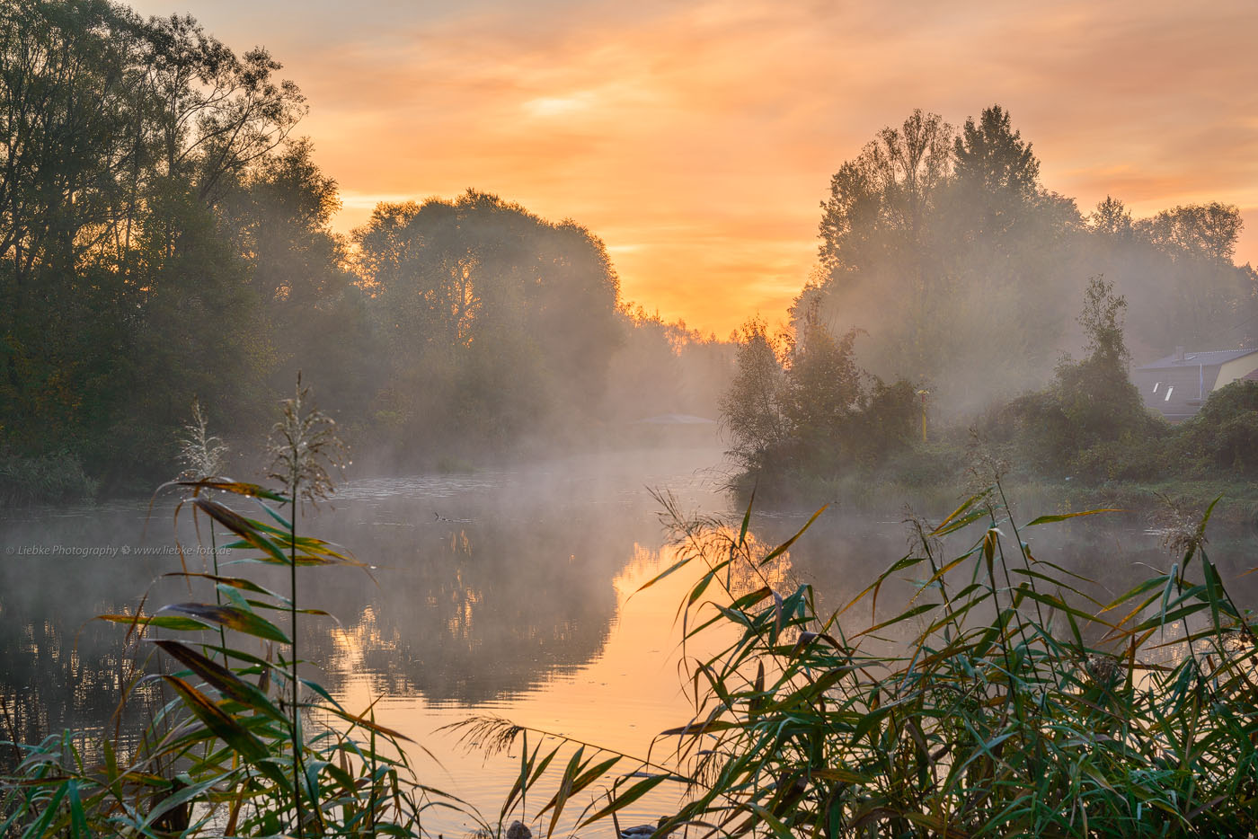 Morgennebel am Havelkanal Oranienburg